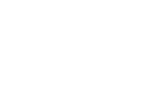 Pin the horse's nose to win!