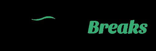 Racingbreaks.com Logo